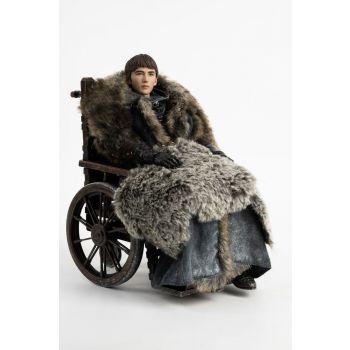 Game of Thrones figurine 1/6 Bran Stark 29 cm