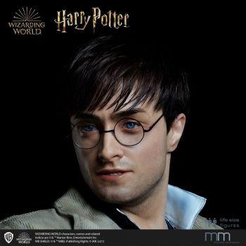 Tête silicone pour la statue 1/1 Harry Potter MMHP-HPDH-1
