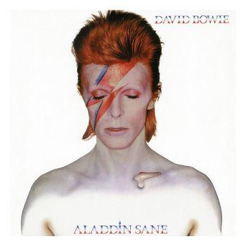 David Bowie Rock Saws puzzle Aladdin Sane (500 pièces)