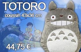Coussin TOTORO 43x36 cm