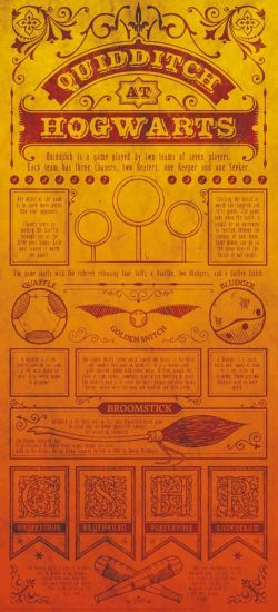Harry Potter lithographie Quidditch 42 x 19 cm
