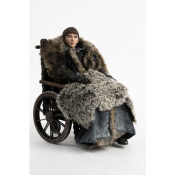 Game of Thrones figurine 1/6 Bran Stark 29 cm