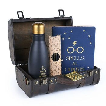 Harry Potter coffret cadeau Trouble Finds Me