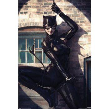 DC Comics posters Catwoman Spot Light 61 x 91 cm (5)