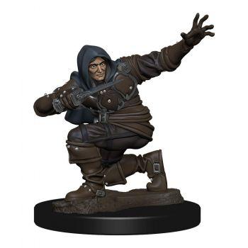 Pathfinder Battles assortiment miniature Premium prépeinte Human Rogue Male (6)