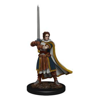 D&D Icons of the Realms miniature Premium prépeinte Human Fighter Male (6)