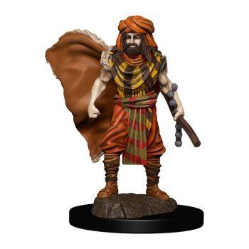 D&D Icons of the Realms miniature Premium prépeinte Human Druid Male (6)