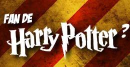 Fan d'Harry Potter ?